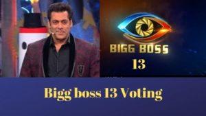 Bigg Boss 13 Voting